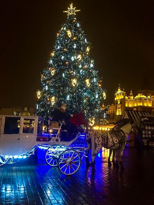 Cracovia: Albero di Natale in Piazza del Mercato